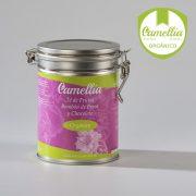 Té de Frutas Bombón de Fresa y Chocolate - Tés Camellia