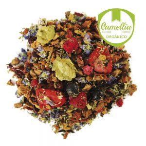 Té Verde con Frutas Brisa del Trópico - Tés Camellia